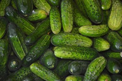 Know Your Food: Cucumbers
