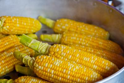 Know Your Food: Corn