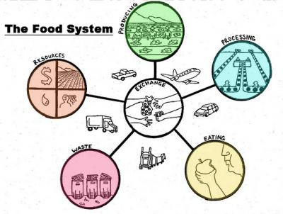 What are Food Systems and why should you care about them?