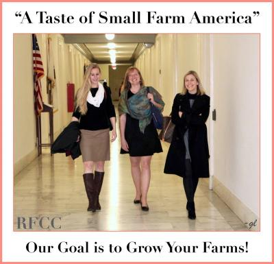 1000EcoFarms is helping break barriers for direct farm-to-consumer sales