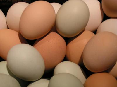 Chicken Eggs (pasture, soy/gmo free)