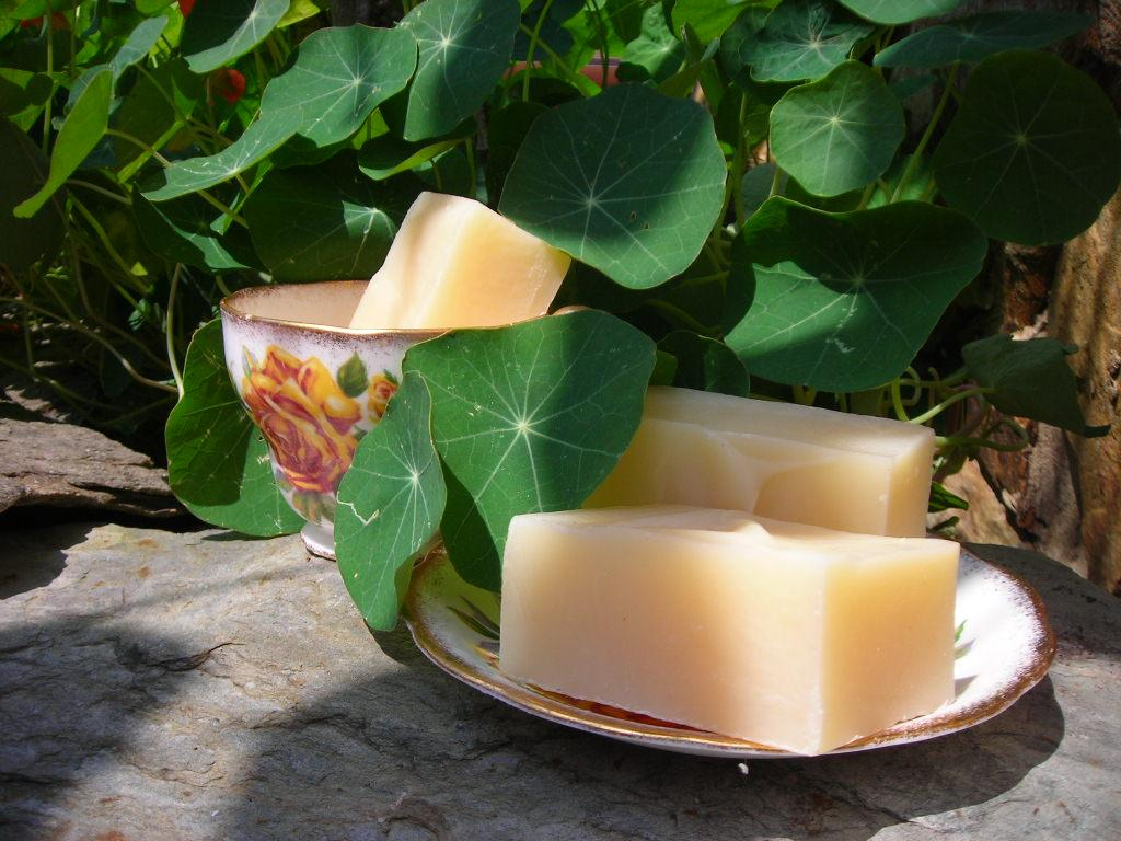 "Shampoo & Soap Bars Handcrafted Vegan ""Herbal Lights"""