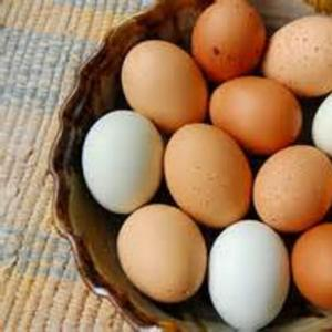 Chicken Eggs. Multiple product options available: 3