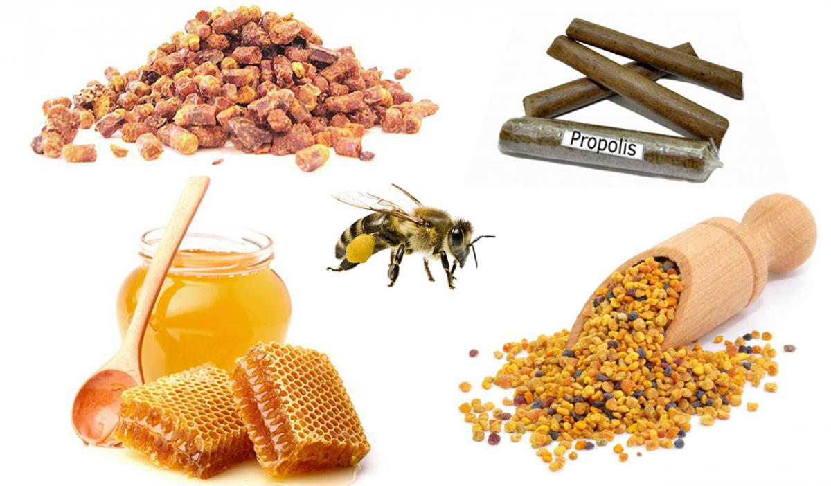 Link to honey bee products, fresh, organic farmers: http://ecominded.net/honey-bee-products.html