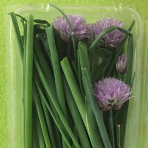Chives. Multiple product options available: 2