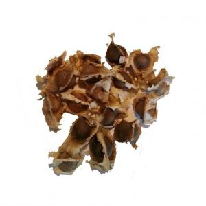 Moringa Seeds, Dried, Conventional