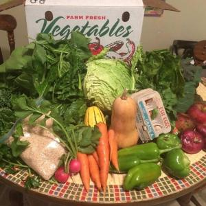 School year CSA Share - 38 weeks. Multiple product options available: 6