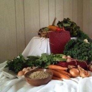 Winter Spring CSA share - 24 weeks. Multiple product options available: 6