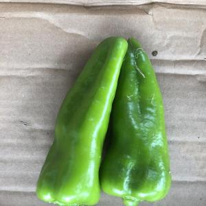 Cubanella Peppers
