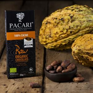 Pacari RAW 100% Chocolate Bar