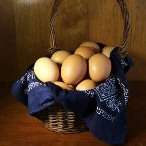Pastured soy free chicken eggs. Multiple product options available: 2