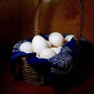 Pastured organic duck eggs
