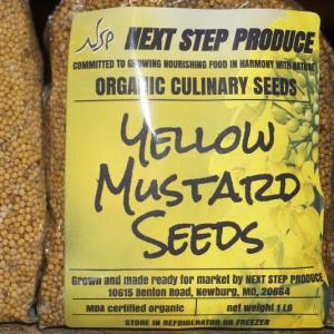 seeds - yellow mustard