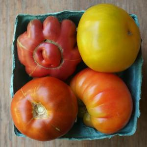 tomatoes - heirloom mix. Multiple product options available: 2