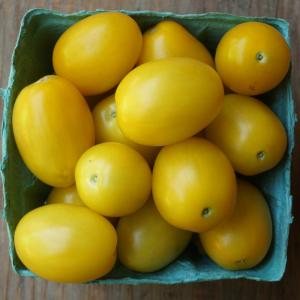 tomatoes - yellow plum. Multiple product options available: 2