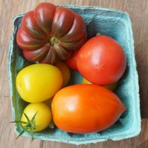 tomatoes - all mix. Multiple product options available: 2