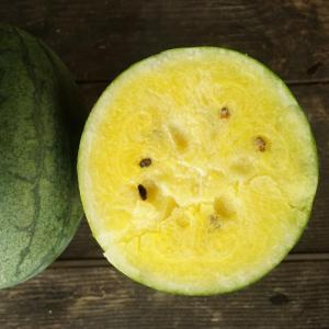 watermelon - seeded yellow