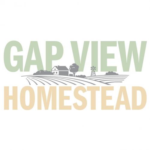 Gap View Homestead