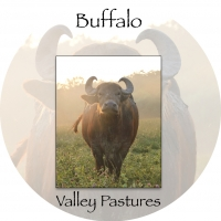 Buffalo Valley Pastures